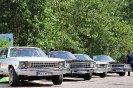 نمایش خودروهای خاص و آفرود_16
